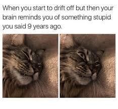 Image 9 Best Grumpy Cat - 25 best memes about grumpy cat grumpy cat memes