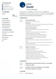 template professional cv templates sample example of resume free