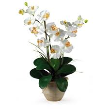 orchid flower arrangements nearly 25 in stem phalaenopsis silk orchid flower