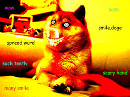 Doge Meme Original Picture - lost doge original google search funny pinterest doge and