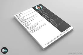 Perfect Resume Format 100 Resume Template Maker 8 Amazing Social Services Resume
