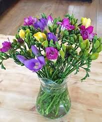flowers uk guernsey flowers by post freesias and flower delivery to the uk