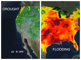 Precipitation Map Of The United States by Animated Map Of Us Rainfall In 2015 Business Insider