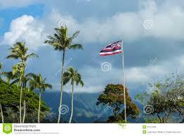 Hawaiian Flag Hawaiian Flag Stock Photo Image Of Freedom Outdoor 31971832