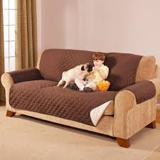 Dog Chair Covers Living Room Dining Chair Covers Ideas Plastic Sofa With Zipper