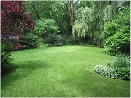 landscaping a sloped backyard ideas how to landscape a sloping