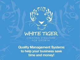 blog white tiger