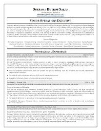 Best Resume For Quality Assurance by Download Helicopter Maintenance Engineer Sample Resume