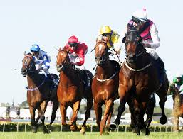 Melbourne Cup Worksheets Horse Racing Clipart Melbourne Cup Pencil And In Color Horse