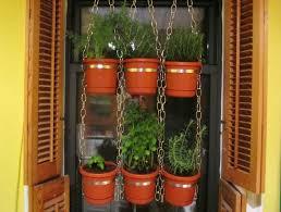 vertical herb garden pallet in cosmopolitan kitchen kitchen