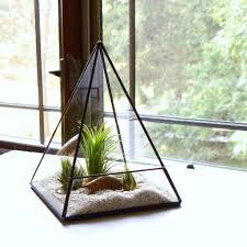 terrarium table desktop ecosphere moss terrarium orb miniature landscape office