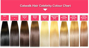 catwalk hair extensions 20 x 7pc clip in on remy human catwalk hair extensions 60 18