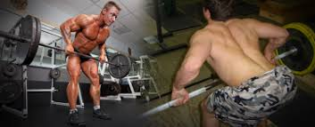 Bench Barbell Row How To Barbell Row Your Guide To The Proper Form U2013 Barbell Academy