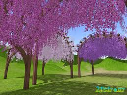 mesh pergola and wisteria love tunnel u2013 hud driven u2013 21strom
