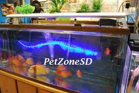 submersible led aquarium lights submersible l e d light awesome for your tank pet zone