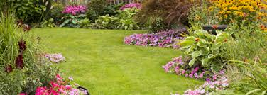 landscaping hardscape contractors atlanta landscaping companies