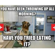 Dog Doctor Meme - porfirio benito diaz porfizaid instagram photos and videos