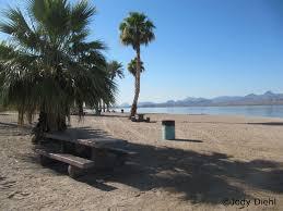 Arizona beaches images Arizona beach beach treasures and treasure beaches jpg