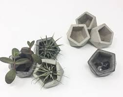 concrete planter etsy