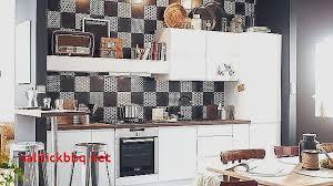 peindre carreaux cuisine peinture carreaux cuisine pour idees de deco de cuisine élégant