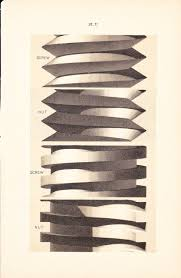 1886 technical drawing antique math geometric mechanical