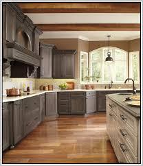 Rustoleum Cabinet Rustoleum Cabinet Transformations Colors Home Design Ideas