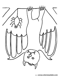 upside down bat coloring picture create a printout or activity