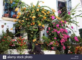 quaint spanish house covered in plants stock photo royalty free