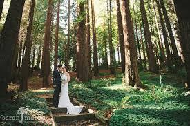 Berkeley Botanical Garden Wedding Jaymee And Drew S Diy Wedding At The Berkeley Botanical