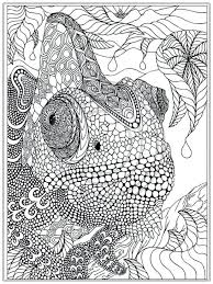 advanced coloring pages printable intermediate