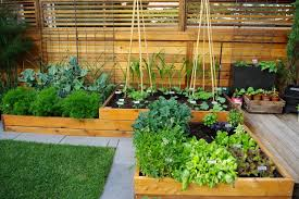 how to hide vegetable garden houzz