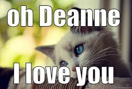 Cat Problems Meme - first world problems cat memes quickmeme