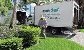 learning landscaping florida style turf