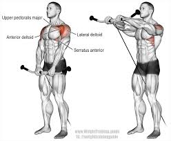 Front Of The Shoulder - cable front raise exercise and weight