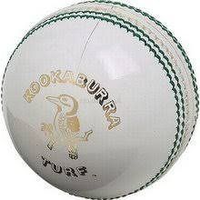 difference between white and cricket balls rushis biz cricket