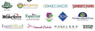 flower companies florida flower companies provide water relief