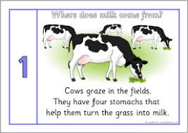 where does milk come from posters sb4914 sparklebox