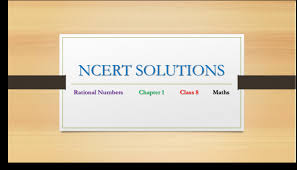 class 8 rational number ncert exercise solutions exercise 1 1