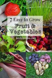 Fruit Garden Ideas 7 Easy To Grow Fruits Vegetables And Tips To Get You Started