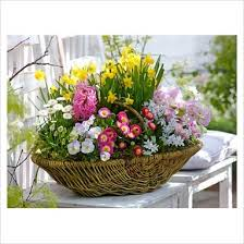 Spring Flower Bouquets - 11 best flowers images on pinterest bridal bouquets branches
