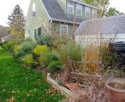 native arkansas plants a corner garden