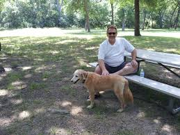 pet sitters u0026 in home dog sitting in plano tx pets are inn