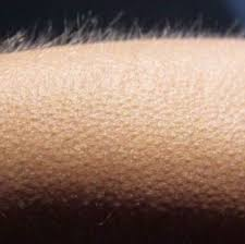 Goosebumps Meme - whisper in ear goosebumps know your meme
