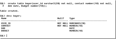 alter table not null to create or alter primary unique and not null constraint in oracle