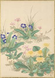 Japanese Flowers Pictures - pictures of flowers and birds lacma collections