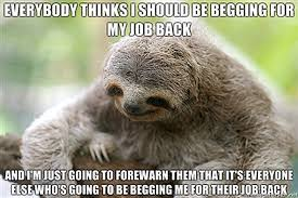 Funny Sloth Memes - charlie sheen quotes presented by baby sloths