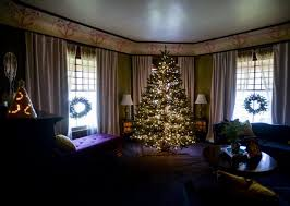 you re mistreating your tree and here s how to fix it