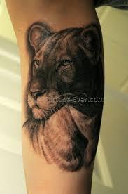 download best lion tattoo ever danielhuscroft com