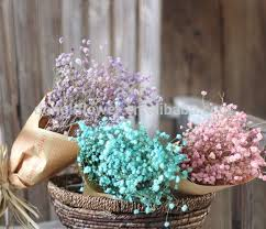 baby s breath wholesale dried gypsophila dried gypsophila suppliers and manufacturers at