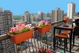 tips for balcony gardening in your downtown calgary condo